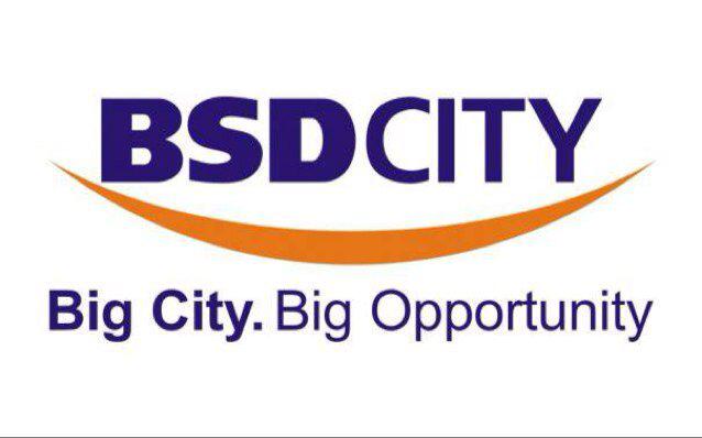 BSD_CITY_logo