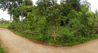 Tanah Dijual di Sukmajaya Cilodong Depok